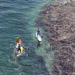 Серфинг на надувных SUP падлбордах EZ